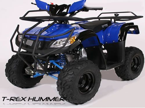quad dla dziecka nitro hummer 125ccm t rex rg7 czarny. Black Bedroom Furniture Sets. Home Design Ideas